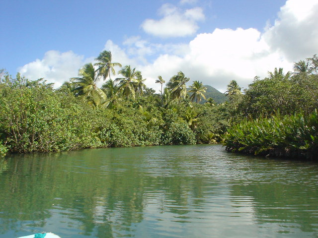 Indian River Dominica