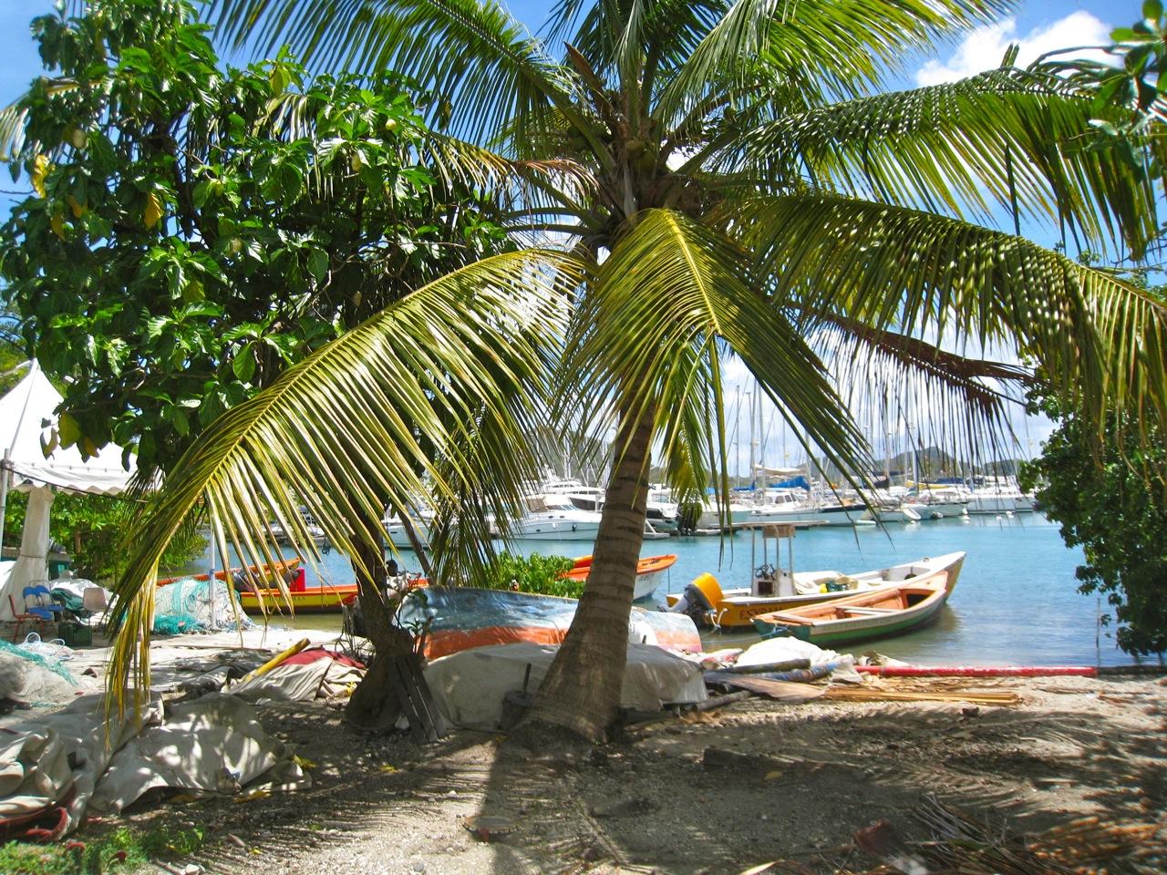 Zeilvakantie Martinique Dominica Guadeloupe