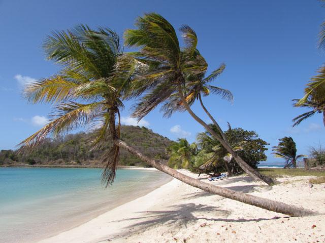 zeilvakantie Caribbean